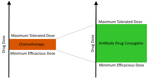 Graphical representation of therapeutic windows for chemotherapy and ADCs